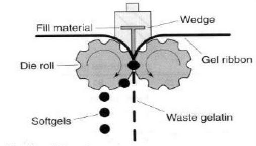 Fill material in softgel encapsulation material