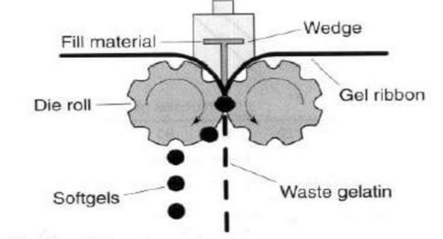 Rotary softgel encapsulation process