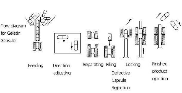 Hard gelatin capsule filling process