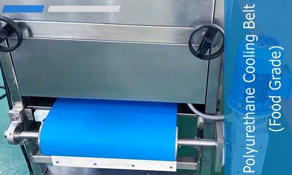 Polyurethane Cooling Belt (Food Grade)